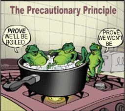 precautionary principle: until you're sure, be prudent